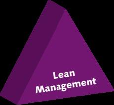 Lean Management System Logo